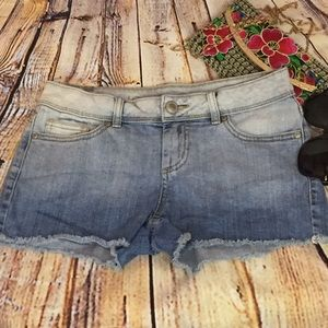 Lauren Conrad Daisy Dukes Frayed Mini Shorts Size4